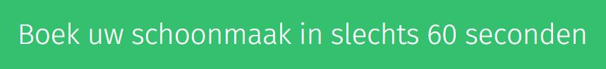 Landingspagina headline Helpling