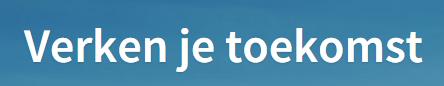 Landingspagina headline Magnet.me